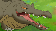 Rutiodon Closeup