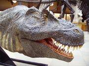 Realistic T.rex model