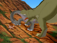 Green Sharptooth trying to bite