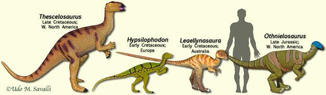 File:HysilophodontModels.jpg