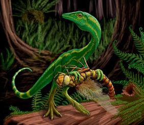 Miller compsognathus