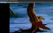 Petrie the tree hugger