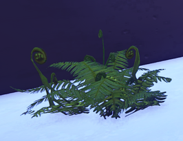 Old Growth Fern Cluster 1 prop placed