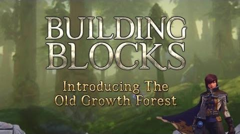 Building Blocks The Old Growth Forest-2