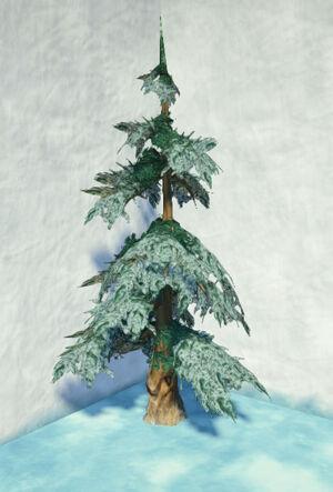 Tundra-fir-snowy-1