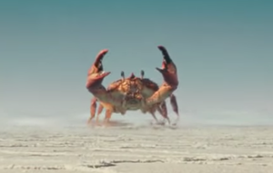 File:Giant Crab-09.png