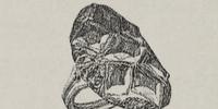 Celine Henry's Garnet Ring