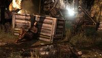 Tomb Raider Screenshot Hunted