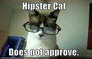 Hipstercatdoesnotapprove
