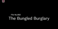 File No. 002: The Bungled Burglary