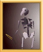 Character Skeleton