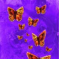 File:Butterfly Swarm.jpg