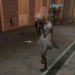 La Witch Novia durante la luz del día, obtenida a travez de mods en el servidor.