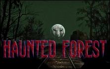 File:Hauntedforest.jpg