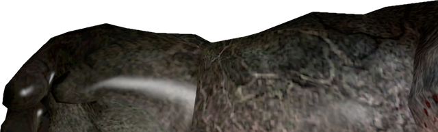 File:Charger first-person view.png
