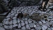 Ancient Traveler's Skull location