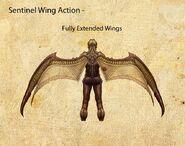 Nosgoth-Character-Sentinel-WingActionDetails-Left