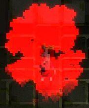 Potion-healmore