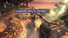 Charm Potion Chest Forest