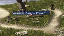 Angel's Prayer Chest Prairie