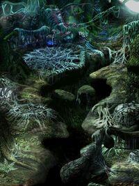 Nest of Dragon 1