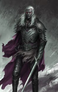 Drow-Warrior