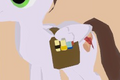 Scroll Bag equipped.png