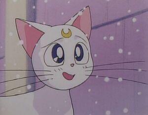 Artemis grin