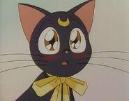 Luna blushes
