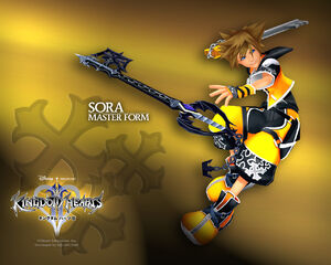 Sora master form