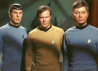 Spock kirk mccoy together