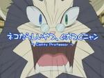Catty Professor