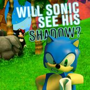 Sonic and Shadow