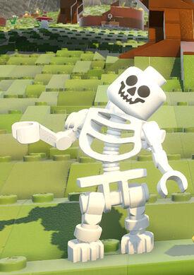 Skeleton-model