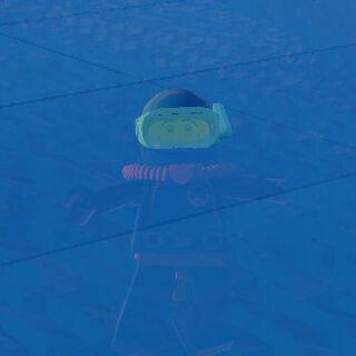 Diver down!