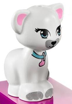 File:White cat friends.jpg