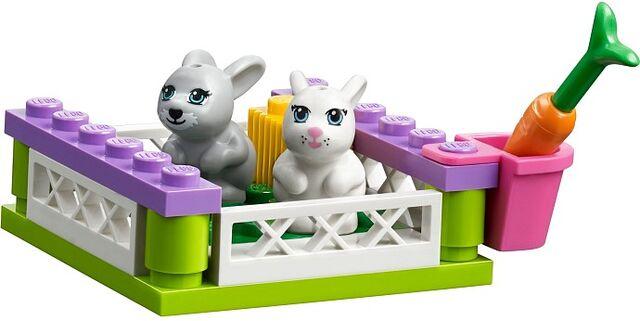 File:41039 bunnies.jpg