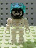 7775 Skeleton