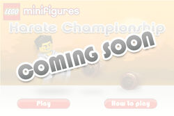Karate Champonship