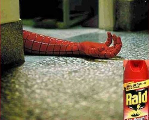 File:Raid-is-spidermans-killer.jpg