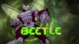 BeetleUSM