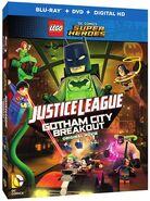 GothamCityBreakoutDVDBluRay