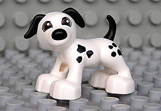 File:Dalmatian03.jpg