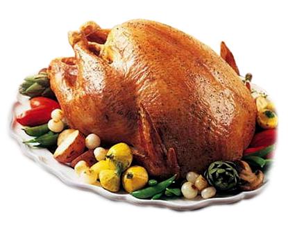 File:Turkey1.jpg