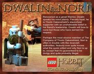 Dwalin and Nori Description
