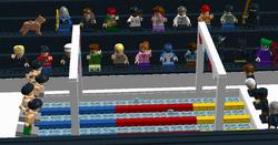 F12 Swimming