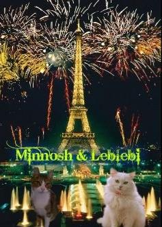 File:Minnosh & leblebi 2.jpg