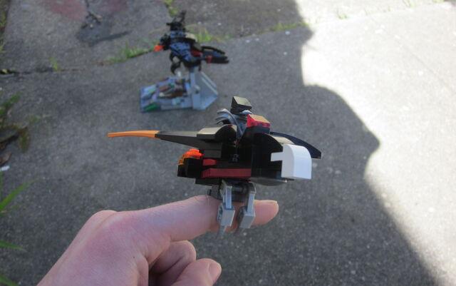 File:RavenChiThing GliderPerch1.JPG