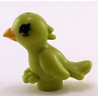 File:Friends parrot.jpg