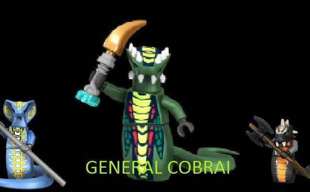 File:General cobrai.jpg